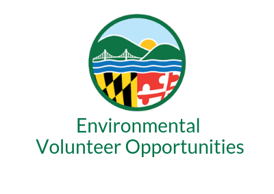 Environmental Volunteer Opportunities